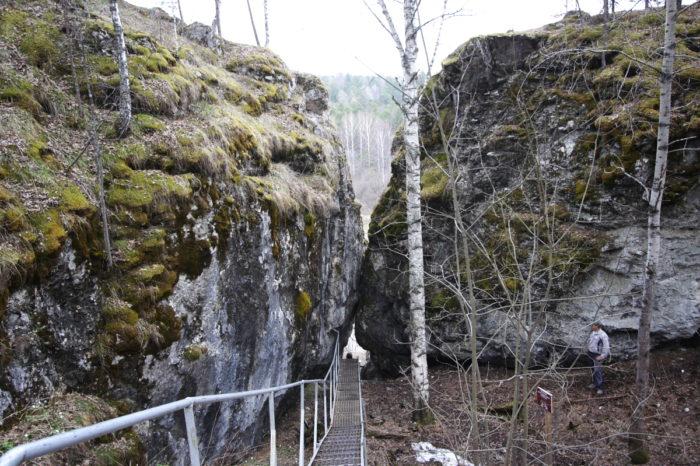 Природный парк «Оленьи ручьи»: сборные группы